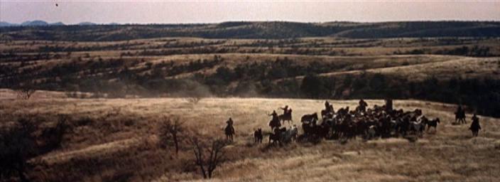 Gunman's Walk (Assim Morrem os Valentes, 1958) de Phil Karlson